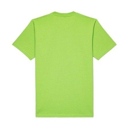 KOSZULKA T-SHIRT SHIELD XX GREEN